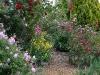 rosegardenbottom_n7k_5931p