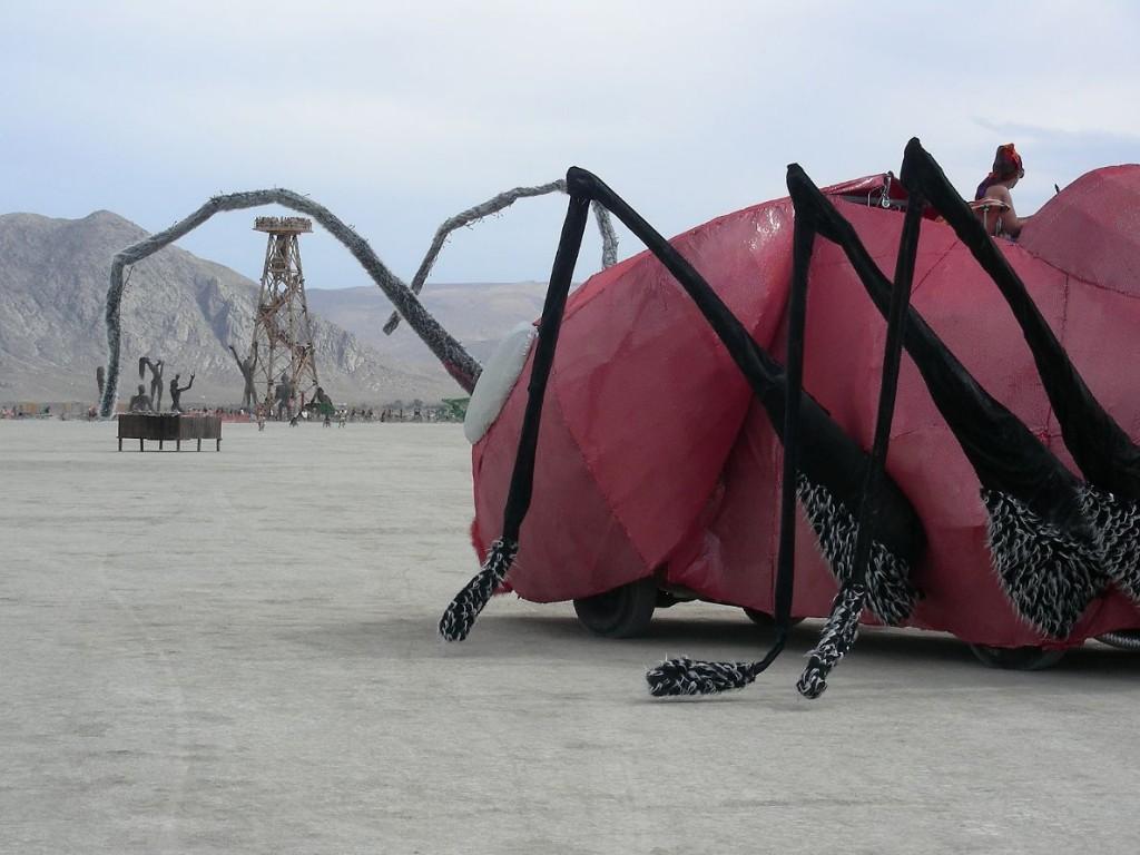 Ant Mischief 2007 DSCN3551
