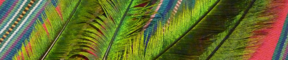 quetzalfeathers_header_P1250401
