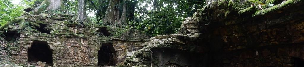 Palenque_header_DSCN2529
