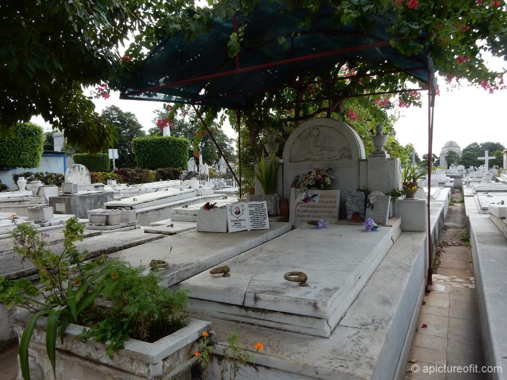 cementeriocolon_dscn1093