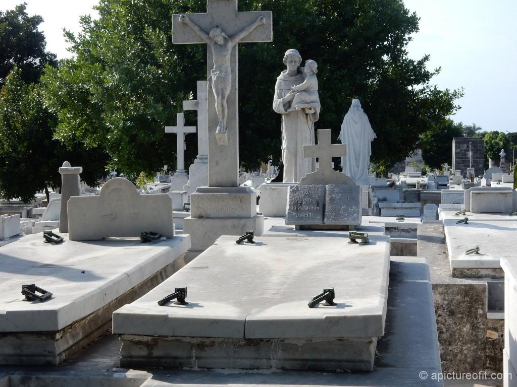 cementeriocolon_dscn1114