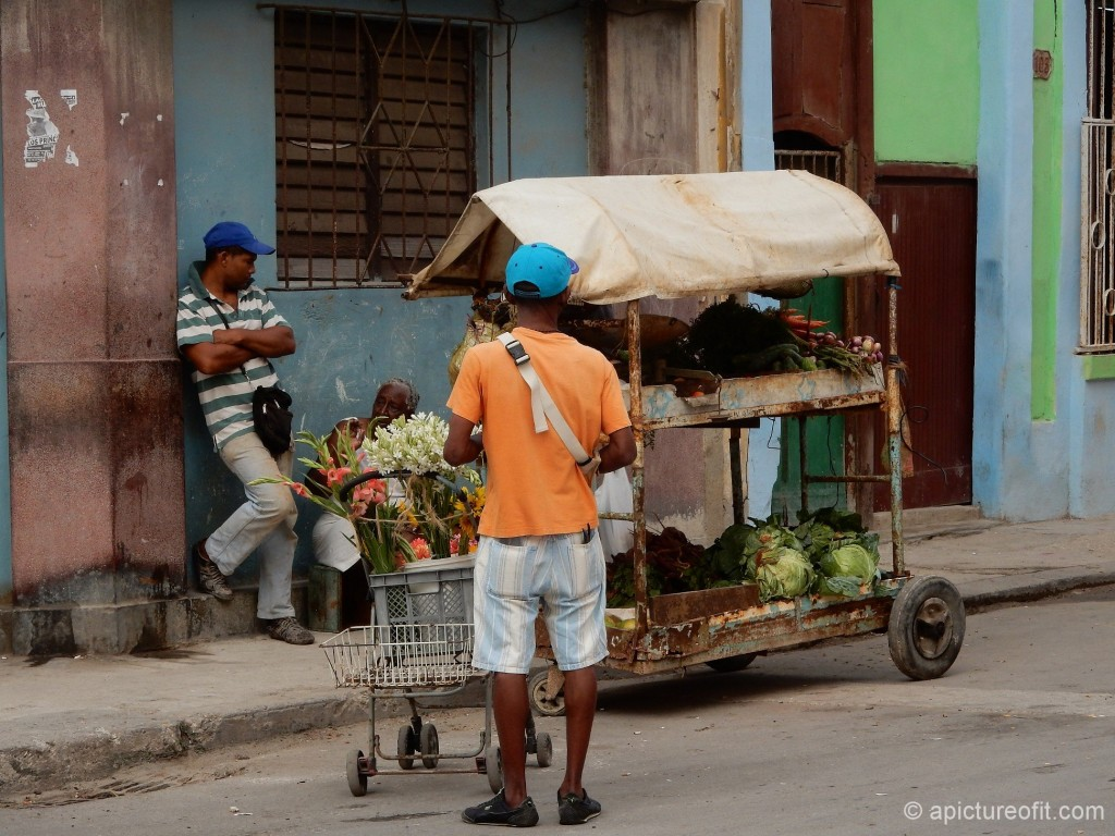 Selling flowers, vegetables and fruit from a cart in Centro